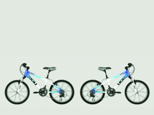 国际名牌自行车美国环球UCC-淇河晨报 - 鹤壁日报社多媒体电子报刊图片